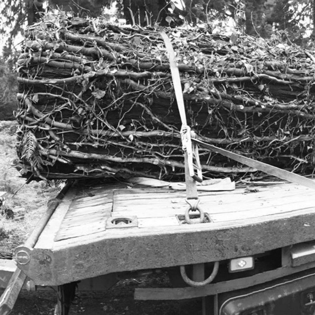 Redwood 2 @farolltd