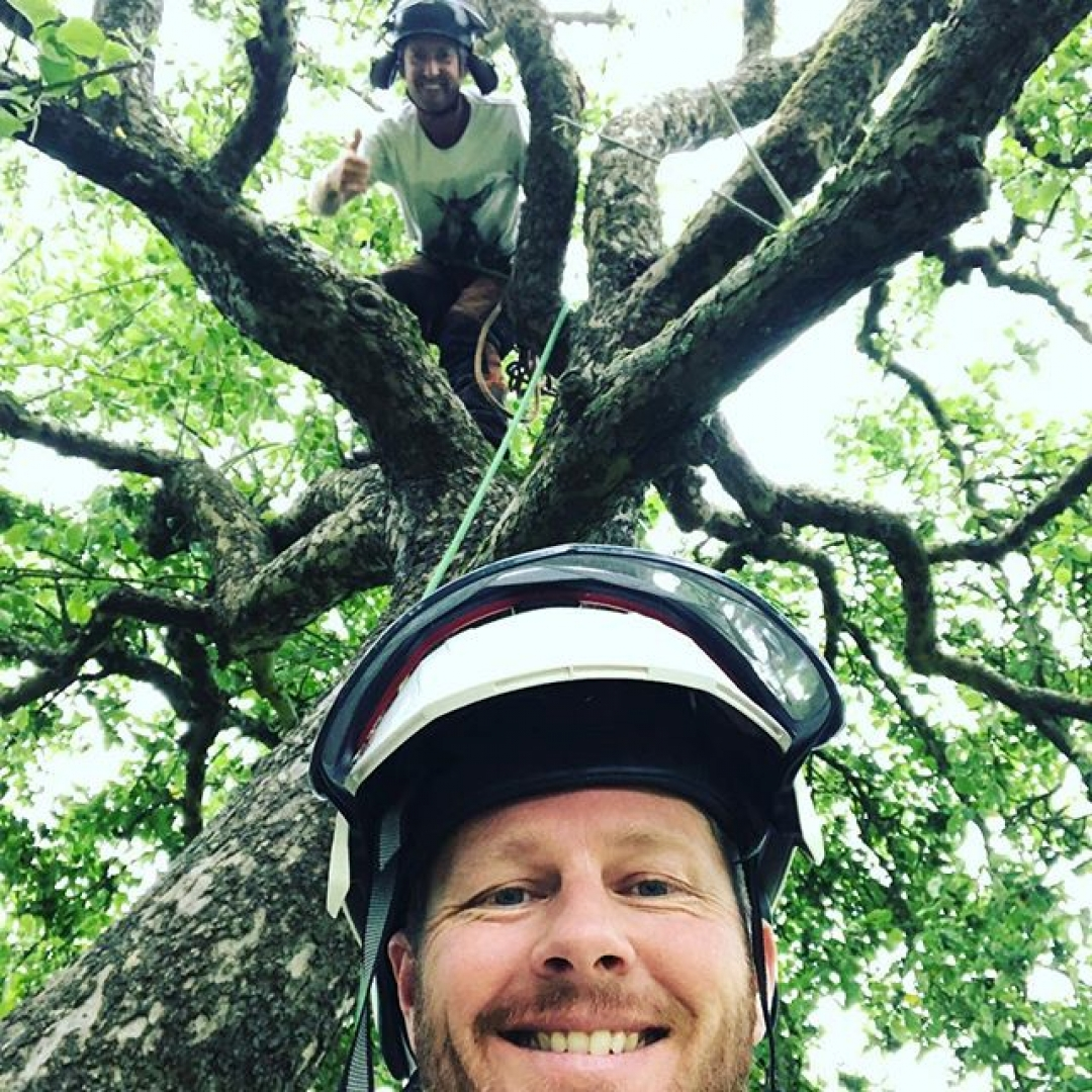 Exciting news!! @jessehorgan my kiwi bro is back on the team to help run the trees freeing me up to focus on the milling, furniture and sculpture #arblife