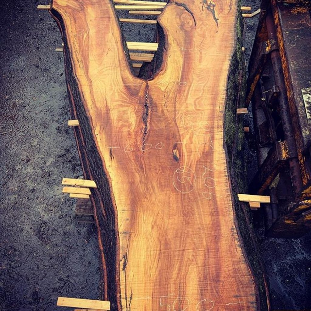 Just one more because it's so stunning #alaskanmill #chainsaw #stihl #ms880 #sawmill #sawmillbusiness #woodpreneur